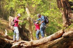 Five great quotes for kids on a day hike