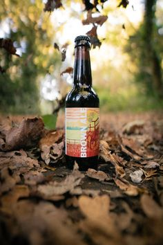 bc8e501ec58 10 Best Alcohol Free Ale   Non Alcoholic Ale - LightDrinks images ...
