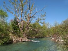 Fly Fishing Greece Excellent Fly Fishing Pictures Visit this site http://www.flyfilmfest.com