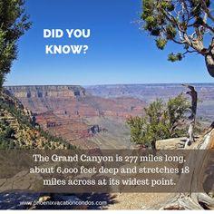Phoenix Vacation Condos - Google+ Condos, Did You Know, Phoenix, Grand Canyon, My Design, Vacation, Google, Travel, Tights