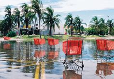 Le droit de l'environnement sur l'autel de l'oligarchie http://www.blog-habitat-durable.com/2015/02/un-recul-du-droit-de-l-environnement.html