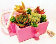 Sweetheart Miniature Succulent Garden in a Tiny Chest of Drawers - Multiple Colors Avail.