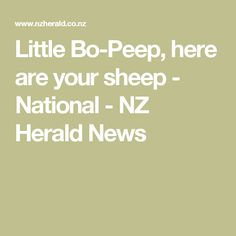 Little Bo-Peep, here are your sheep - National - NZ Herald News