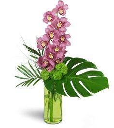 Stunning and exotic, this array of dusky pink cymbidium orchids will show your good taste for a birthday, anniversary, or corporate display. A full stem of cymbidium orchids speaks for elegant luxury, and soft pinks and vibrant greens add a captivating air.    One full stem of pink cymbidium orchids is arranged with delicate dianthus and tropical leaves in a green glass vase.