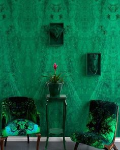 """437 Likes, 11 Comments - Timorous Beasties Official (@timorous_beasties) on Instagram: """"Feeling Green #design #print #textiles #wallpaper #green #colour #pattern #interiors #decor…"""""""