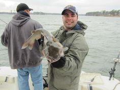 Catfishing on Lake Murray