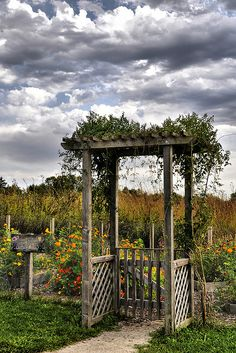stormy skies...great arbor and gate