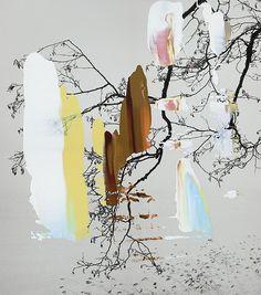 Nanna Hanninen Prayer Tree I 2012 160 x 142 cm Digital C-print on Diasec Mounted on Mdf with Oak frame Edition of 3 x 81 cm Edition of Claude Monet, Pablo Picasso, Vincent Van Gogh, Botanical Illustration, Illustration Art, Nature Artists, Pretty Pictures, New Art, Modern Art