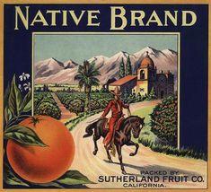 Native Brand - California - Citrus Crate Label (Art Prints, Wood & Metal Signs, Canvas, Tote Bag, To Vintage Labels, Vintage Ads, Vintage Posters, Native Brand, Mexico Art, Stock Art, Fruit Art, Vintage Advertisements, Crates