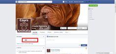 500 J'aime sur la page Facebook animée pour Cours Animalia.