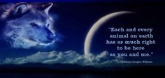 Each and every Animal