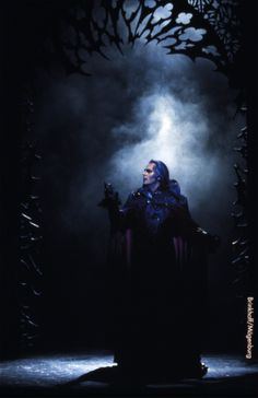 Die 521 Besten Bilder Von Tanz Der Vampire Musicals Musical
