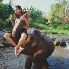 Toni she is the luckiest girl in the world Vacation Places, Places To Travel, Places To Visit, Adventure Awaits, Adventure Travel, Volunteer In Africa, Marathon Laufen, Bali Honeymoon, Elephant Sanctuary