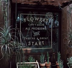 Flowers can't solve all problems - but they're a great start!