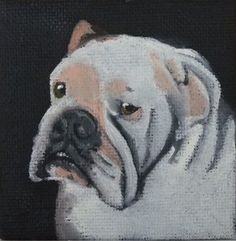"""This is the late Sumo as pictured in the portrait of magician Paul Kovak. this is a 3"""" x 3"""" miniature on canvas"""