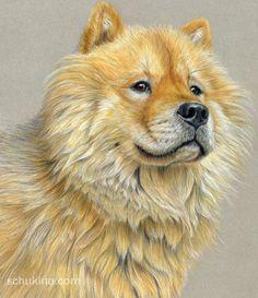 "Golden Retriever Portrait. Drawn with color pencils on colored paiper. Size: 12"" x 16"""