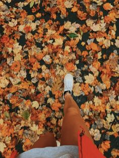 See more of sunshinegirls-vsco's VSCO. Fall Pictures, Fall Photos, Autumn Cozy, Fall Winter, Autumn Aesthetic, Happy Fall Y'all, Autumn Photography, Foto Pose, Hello Autumn