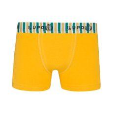 Underwear Kids - Cueca Boxer Lupo - 00153-002