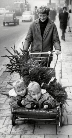 A woman with twins and a Christmas tree in a stroller, Amsterdam, 1964