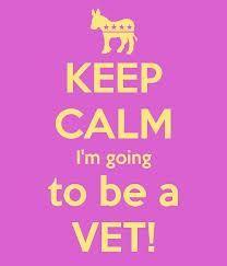 Veterinarian <3 (eventually ;) )