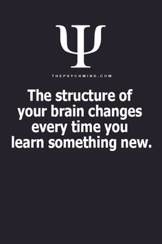 Your brain is made of many finger like fiber nerves soaking up all the information it can.