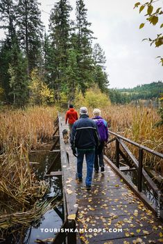 Spend crisp fall days walking Kamloops' trails with golden hues of autumn. Here are 5 accessible trails ideal for the whole family - strollers included. Sunset Valley, Salmon Run, Lookout Tower, Riverside Park, River Trail, Deciduous Trees, Picnic Area, Lake View, Hiking Trails