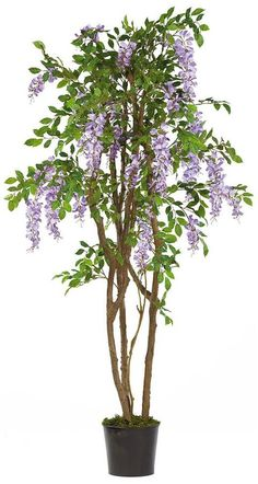 NICE PRICE! Nearly natural 5-ft. Silk Wisteria Tree by Kohl's  http://api.shopstyle.com/action/apiVisitRetailer?id=438442719&pid=uid1209-1151453-20