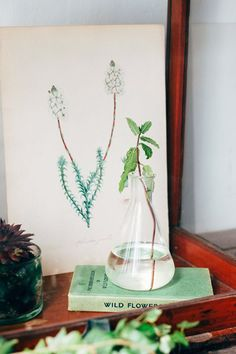 green book with glass beaker as vase on top / sfgirlbybay