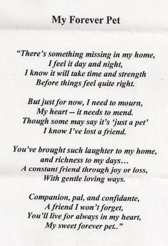46 Best Poems about dogs images in 2019 | Grief, I miss u, Miss You