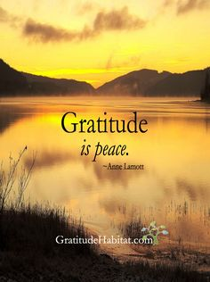 Gratitude is peace.  Thank you, Anne Lamott  Visit us at: www.GratitudeHabitat.com #gratitude #peace #Anne-Lamott