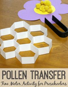 Bee pollen OT tweezers activity Small motor skill practice, spring, insects, bugs, and summer themed activity