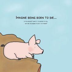 Vegetarian Quotes, Vegan Quotes, Going Vegetarian, Going Vegan, Vegan Facts, Vegan Memes, Born To Die, Reasons To Go Vegan, Why Vegan