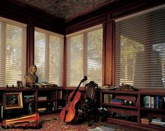 Sheer inspiration-the joy of natural light, the benefit of UV protection for whatever treasured belongings you might have in a library.  Nantucket® window shadings ♦ Hunter Douglas window treatments #LivingRoom