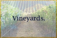 Vineyards Board Cover Photo.