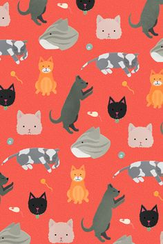 New cats wallpaper pattern wallpapers Ideas Cats Wallpaper, Pattern Wallpaper, Trendy Wallpaper, I Love Cats, Crazy Cats, Cat Pattern, Pretty Patterns, Cool Walls, Textures Patterns