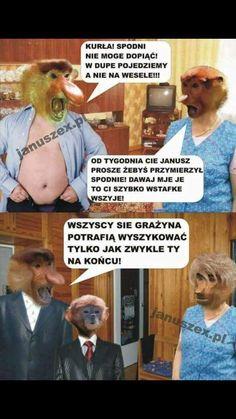 Wtf Funny, Funny Memes, Jokes, Polish Memes, Good Mood, Best Memes, Funny Photos, Haha, I Am Awesome