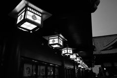_0016770.jpg by Ryo(りょう