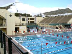 Cell Membrane- Controls what enters and leaves the cell. The gate around the pool lets people enter and leave the swim meet. The gate is like the Cell Membrane because it controls what enters and leaves the swim meet. College Campus, College Life, Stanford Swimming, San Mateo County, Top Universities, Stanford University, Swimming Pools, Athletic Center, Swim Meet