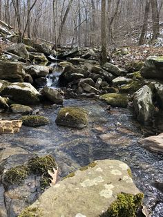 Creek in Colbert Hollow Shawnee National Forest