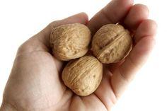 Se encontró que las personas que comen un puño de nueces diario son 20% menos probables a morir de cualquier causa en un periodo de 30 años que aquellas que no consumen nueces.