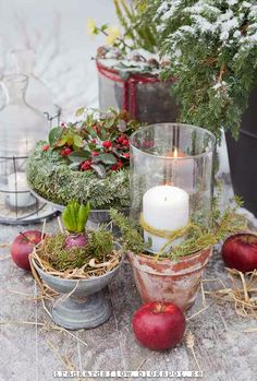 Wintry vignette of greens and candles and apples in true Scandinavian style. Beautiful natural elements.  Garden Flow: And then Came the snow