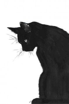 Black Cat by Midniterain