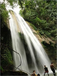 Cateel, Davao Oriental. Aliwagwag Falls, (Phils' highest at 388 m with 84 cascading falls)