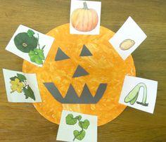 pumpkin unit, life cycle craft