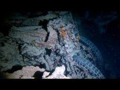 Croisière plongée bio en Mer Rouge !!! Juin 2014 #plongée #Egypte #voyage #mer