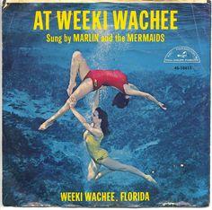 Weeki Wachee Springs record