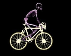 funny skeleton cycling - Nice Look! You must have lost a lot of weight riding ;-)
