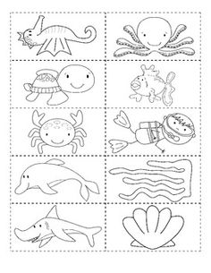 $2 Ocean Friends What is in the ocean? Emergent Reader Cut and Paste Activity Reader