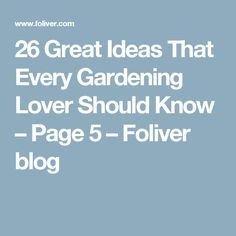 26 Great Ideas That Every Gardening Lover Should Know – Page 5 – Foliver blog