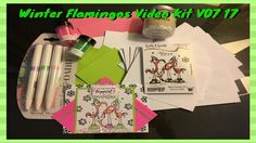 Winter Flamingos Video Kit V07 17